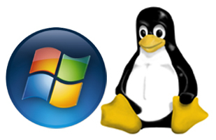 Windows or Linux